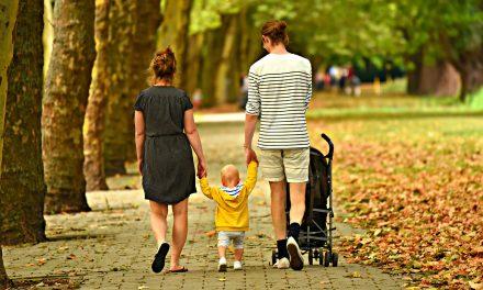 Tag familien med på en guidet bustur